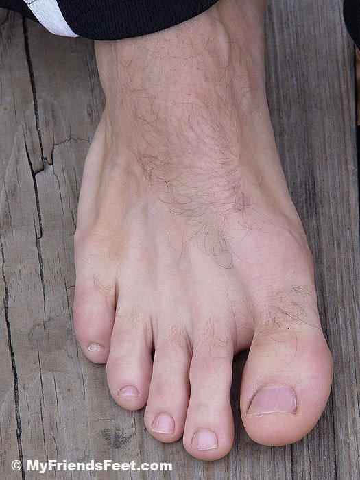 Les orteils