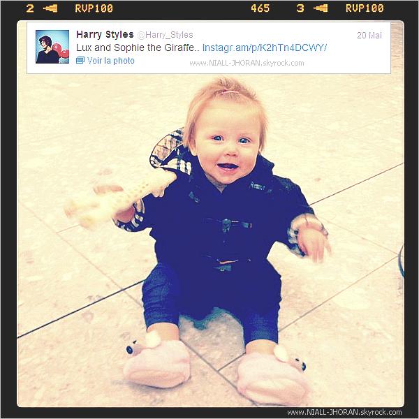 20/05 : Les garçons sur le départ pour les USA pour leur tournée américaine à l'aéroport d'Heathrow, à Londres accompagné de leur maquilleuse et de son célèbre bébé, Lux. Alors Zayn & Lux, je craque :) + Photo provenant du twitter de Harry montrant Lux (le bébé de leur maquilleuse) en ajoutant comme commentaires : '' Lux & Sophie la girafe...'' - Qu'en pensez-vous ? :-)