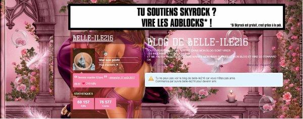 BLOG DE BELLE-ILE216