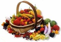 The Paleo Diet food list