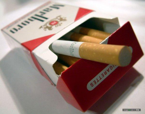 × |[.Arτicle 4.]| ×   Fumer esτ le meilleur moyen de se suicider sαns que personne ne s'en rendenτ compτe .