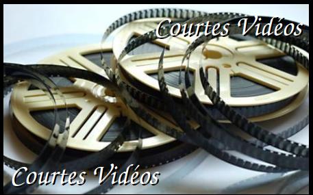 Courtes Vidéos