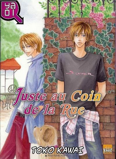 Passionnément yaoi : critique manga