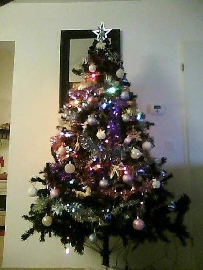 Notre Sapin !!