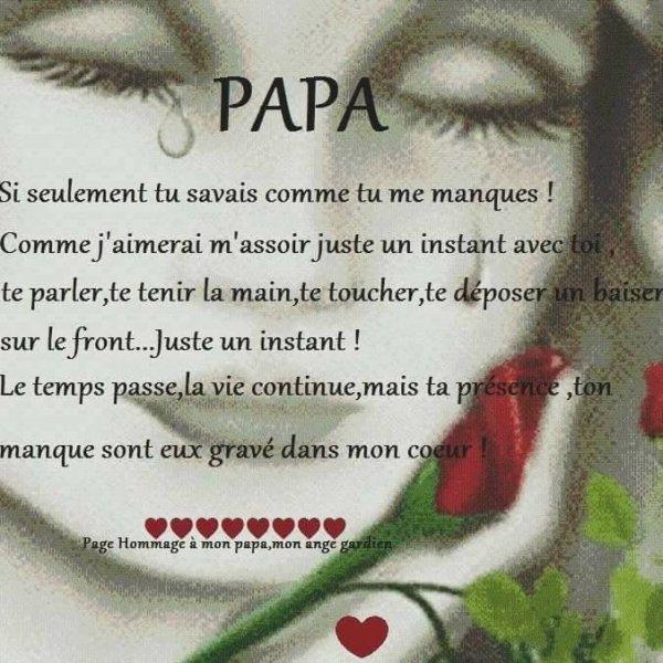 pour mon papa je t'aime tu me manque