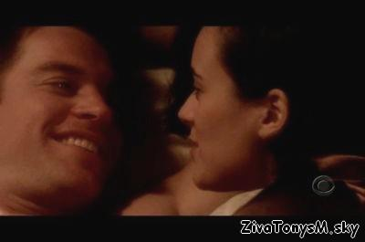 Top Five Ncis Ziva Tony Fanfiction - Circus