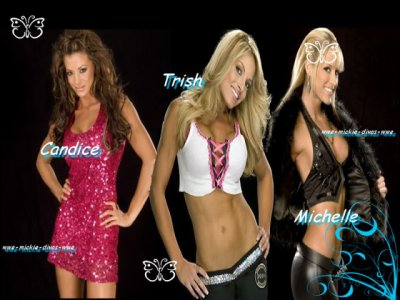 WWE-Mickie-Divas-WWE N°6