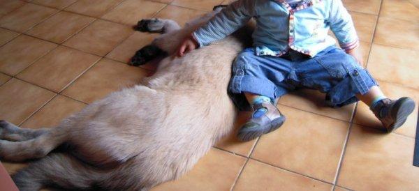 Des gros câlins pour moi de la part d'un bébé: tout pour plaire!!! ☼