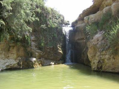 c photo de tamerza qui esxiste au sud-ouest tunisienne region de touzeur