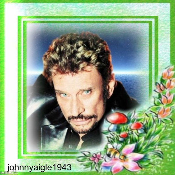 johnnyaigle1943 bonjour je t aime johnny
