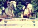 Photo de love-horsedu31