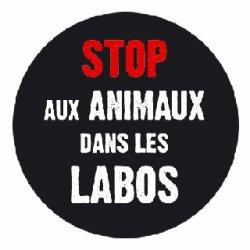 """Lyon : un rassemblement pour dire """"stop aux produits testés sur les animaux"""" ce samedi"""