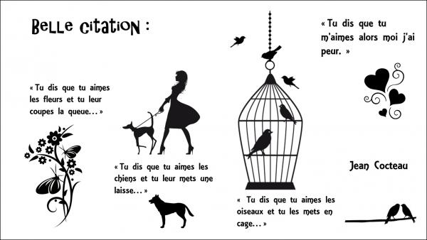 Belle citation :   actu.animals
