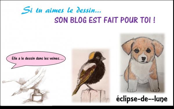 LE blog de dessin :