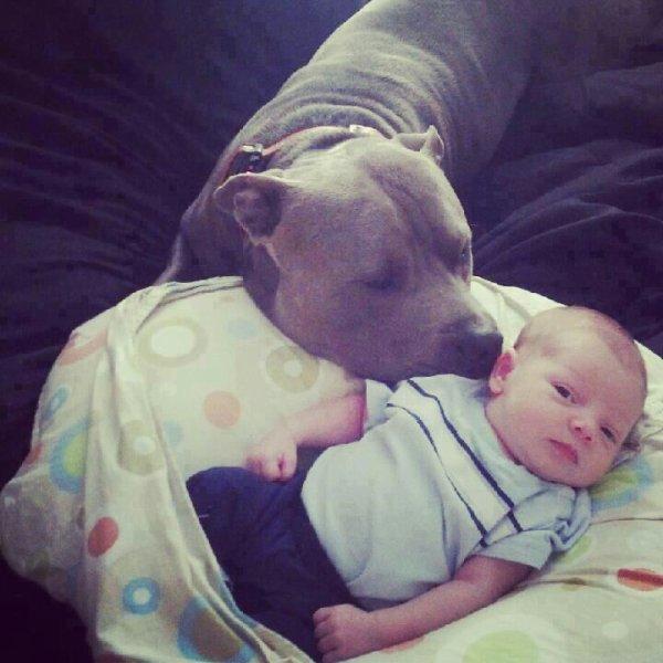mn petiti cousin avec son chien