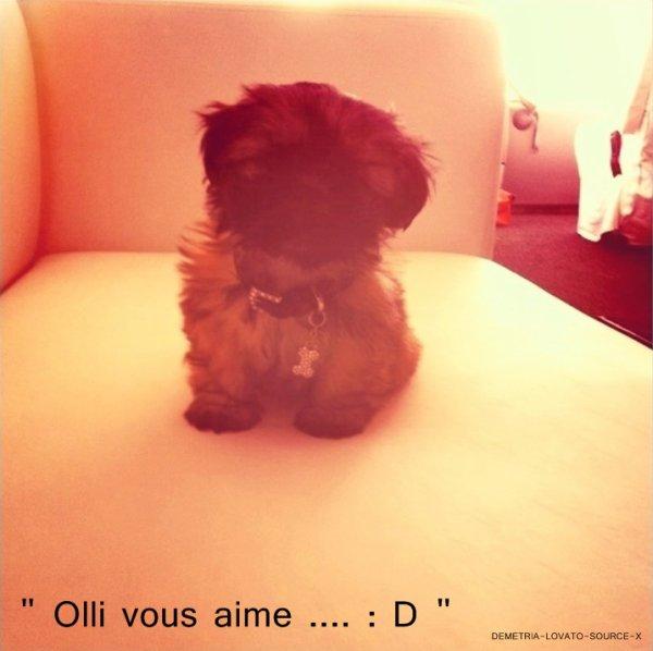 16/06/11 : Twitter  Demi a posté ces photos sur son twitter avec des commentaires