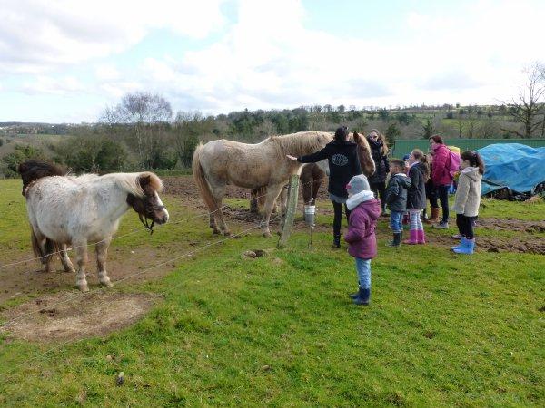 CORAY  :Visite à la ferme (3)