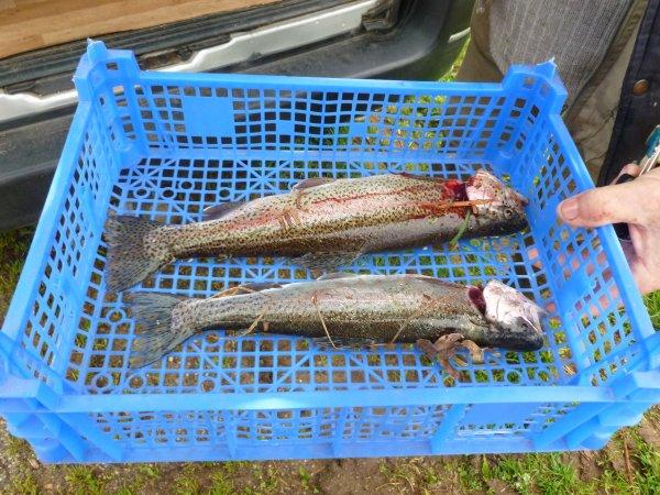 CORAY  : Ouverture de la Pêche