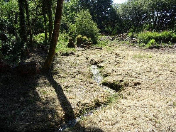 CORAY : Les Sources de l'Aven (avant nettoyage).