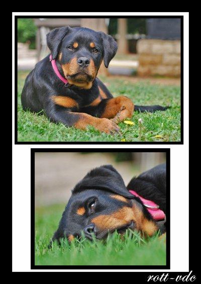 30-09-2010: Nouvelles photos de bébés !!!