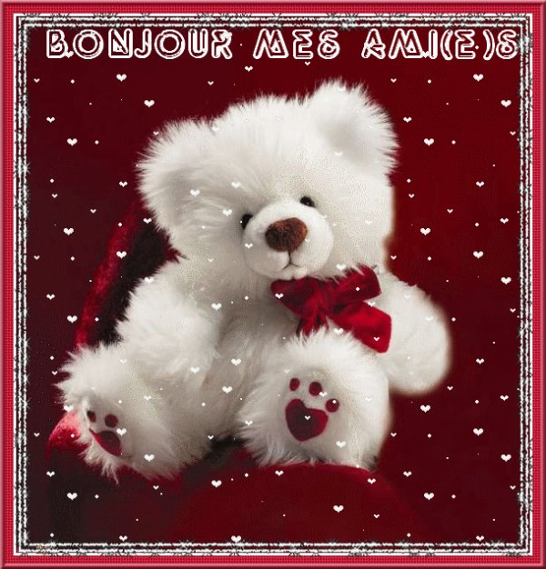 """Nounours """" Bonjour Mes Amies """""""