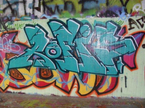 ROFIS