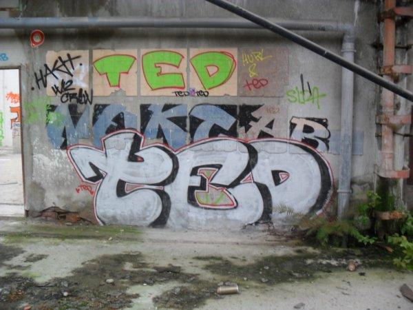 TED NEKTAR TED