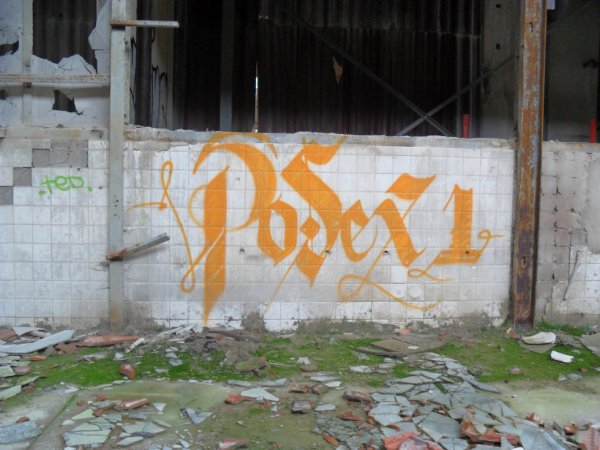 POSEX 1