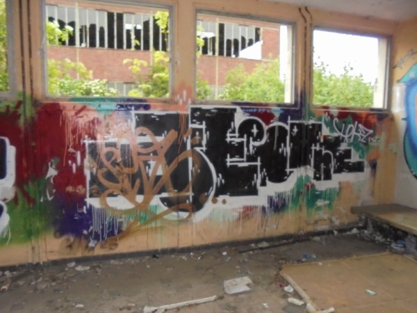 APEE ONE