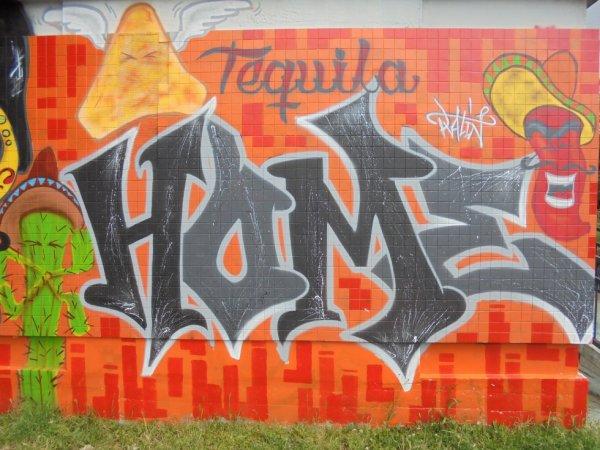 Projet HOME Toul 2014