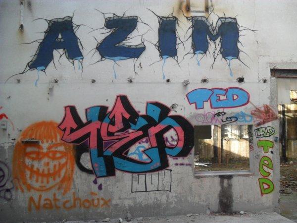 AZIM TED