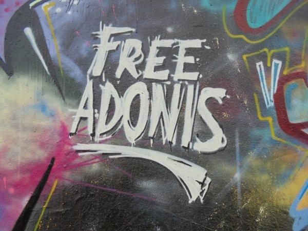 FREE ADONIS