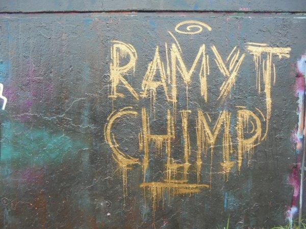 RAMYT CHIMP FREI HEIT DEMS