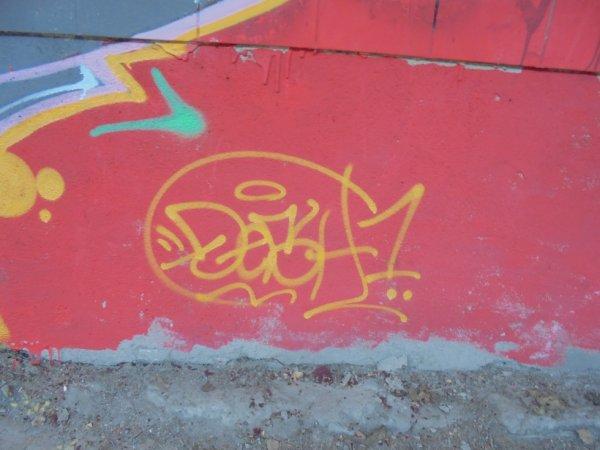 DESH 1