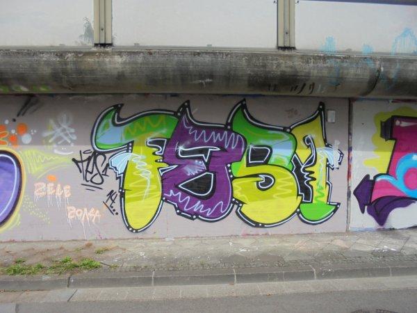 TES 1