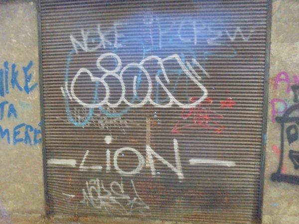 NOKE IP CREW LION ONER