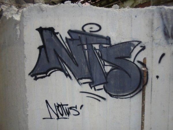 NOTUS