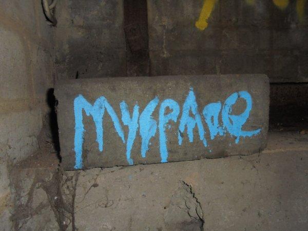 MYSPACE CREW