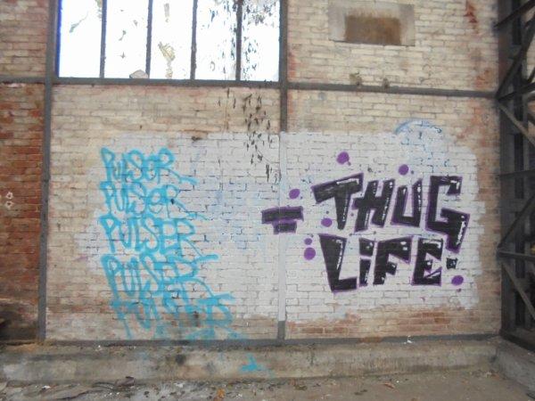 PULSER THUG LIFE