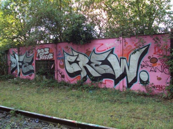 DFE CREW