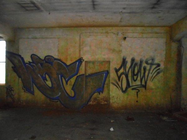 WSC SHOW