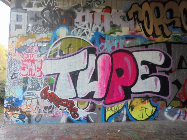 RULO CREW 3ME CREW TUPE