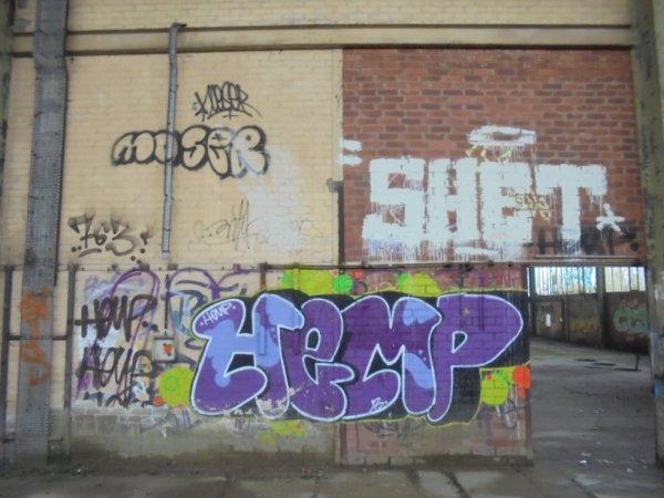 MOSER 763 CREW ANTIK SHET HEMP