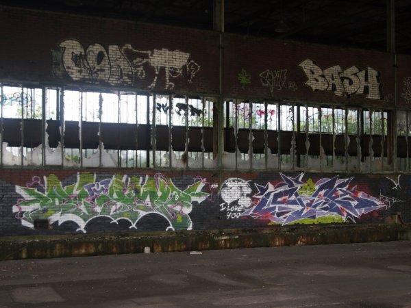 COAST BASH OLYMP APEE
