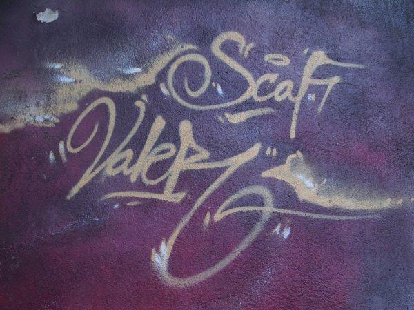 SCAF VALER