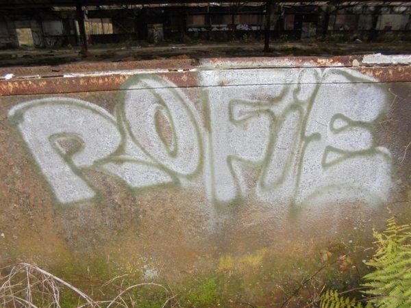 ROFIE