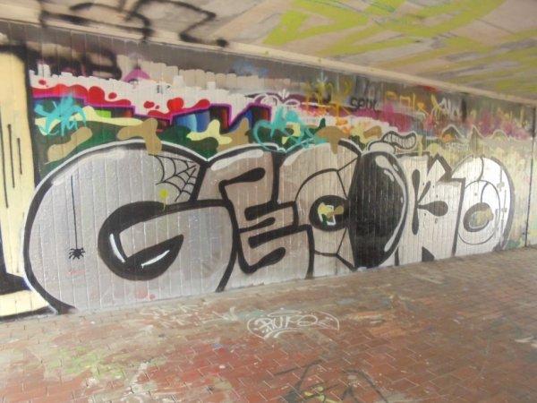 GECOKO
