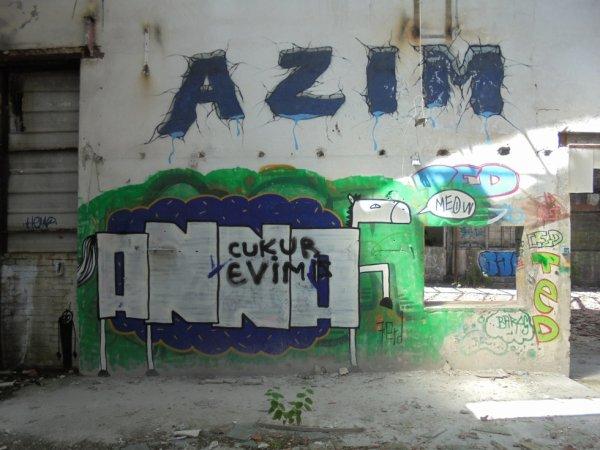 AZIM ANNA
