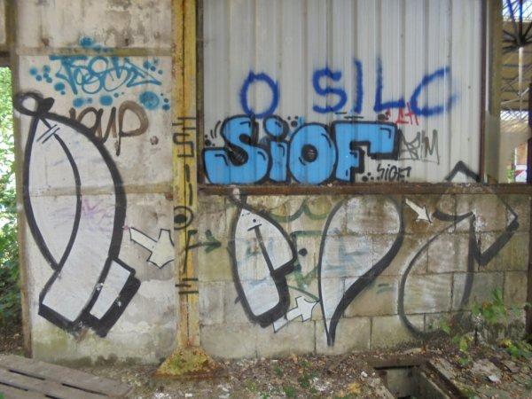 SIOF HAFT