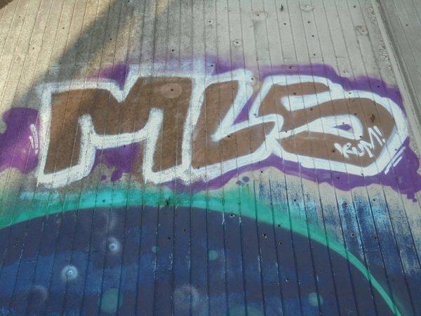 MLS CREW